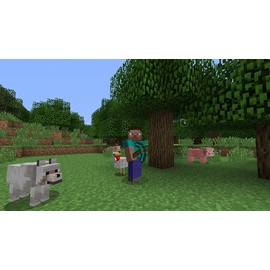 Minecraft (PEGI) (PS4)