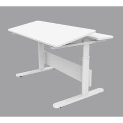 Flexa Schreibtisch EVO 82-50147