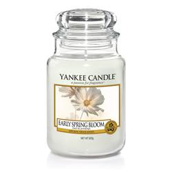 YANKEE CANDLE Große Kerze EARLY SPRING BLOOM 623 g Duftkerze