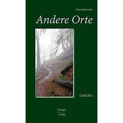 Andere Orte. Elke Kaminsky  - Buch