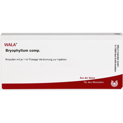 BRYOPHYLLUM COMP.Ampullen 10 ml