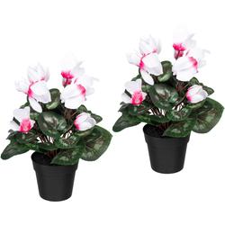 Künstliche Zimmerpflanze Alpenveilchen Alpenveilchen, Creativ green, Höhe 30 cm, 2er Set weiß