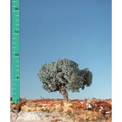 Silhouette 245-12 Baum Olivenbaum 1St.