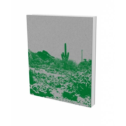 Olivier Mosset: TUTU als Buch von Olivier Mosset