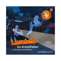 Sauerländer Verlag Hörspiel CD Lieselotte TV-Serie 11 - Lieselotte im