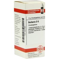 BERBERIS D 6