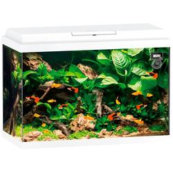 JUWEL AQUARIEN Aquarium Primo 70, BxTxH: 61x31x44 cm, 70 l
