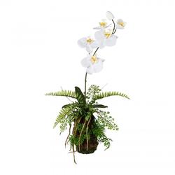 Kunstblume Orchideen/Farn(H 48 cm)
