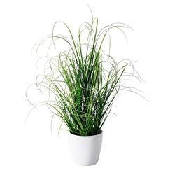 Deko-Pflanze Grasbusch grün