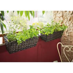 HomeLiving Blumentopf Polyrattan