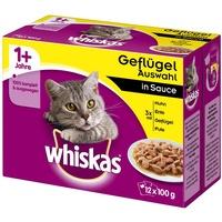 Whiskas 1+ Frischebeutel Gemischte Auswahl in Gelee 12 x 100 g