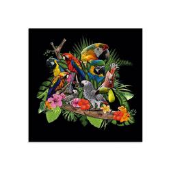 Artland Glasbild Papageien Graupapagei Kakadu Dschungel, Vögel (1 Stück) 40 cm x 40 cm x 1,1 cm