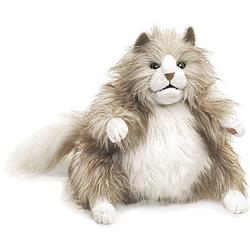 Pummelige Katze