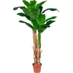 Kunstpflanze Kunstpflanze, Creativ green, Höhe 170 cm