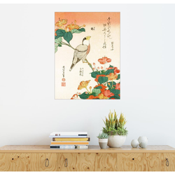 Posterlounge Wandbild, Mirabilis Jalapa und Kernbeißer 50 cm x 70 cm