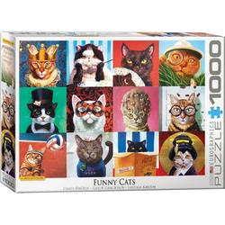 empireposter Puzzle Lustige Katzen von Lucia Heffernan - 1000 Teile Puzzle - 68x48 cm, 1000 Puzzleteile