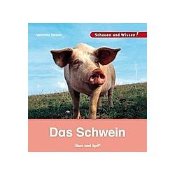 Das Schwein. Veronika Straaß  - Buch