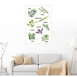 Posterlounge Wandbild, Gewürzpflanzen 60 cm x 90 cm