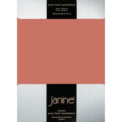 Bettlaken Spannbetttuch Comfort - Jersey-Elastic,, Janine, Jersey 200x200cm cm x 200x200cm cm