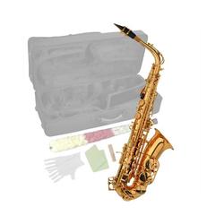 Steinbach Saxophon Steinbach Eb Alt-Saxophon in Messing mit hohem FIS