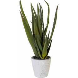 Kunstpflanze Aloe, Creativ green, Höhe 44 cm