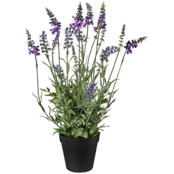 Kunstpflanze Lavendel, Creativ green, Höhe 48 cm, im Topf