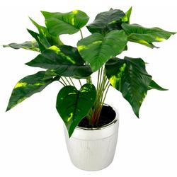 Kunstpflanze Pothospflanze im Topf Pothospflanze, Höhe 35 cm