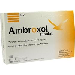 AMBROXOL Inhalat Lösung für einen Vernebler 100 ml