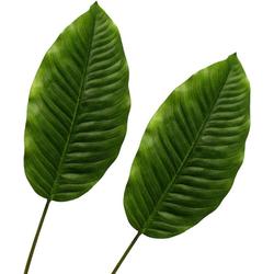 Künstliche Zimmerpflanze Dieffenbachiablatt Blattstiel, Creativ green, Höhe 91 cm