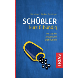 Schüßler kurz & bündig als Buch von Thomas Feichtinger/ Susana Niedan-Feichtinger
