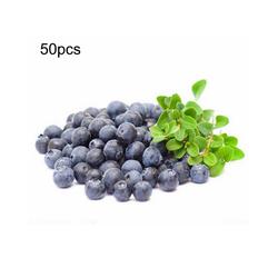 Künstliche Zimmerpflanze, Gotui, 50 Stück künstliche Blaubeer-Frucht