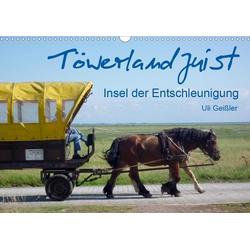 Töwerland Juist (Wandkalender 2020 DIN A3 quer)