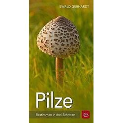 Pilze. Ewald Gerhardt  - Buch
