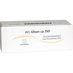 W1 Allium cp JSO