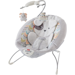 Fisher-Price® Babywippe Deluxe Babywippe