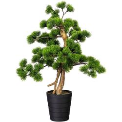 Kunstbonsai Bonsai Kiefer Bonsai Kiefer, Creativ green, Höhe 60 cm