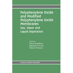 Polyphenylene Oxide and Modified Polyphenylene Oxide Membranes als Buch von