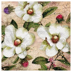 Linoows Papierserviette 20 Servietten, Drei Weiße Magnolien und Blütenknos, Motiv Weiße Magnolien und Blütenknospen