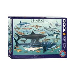 EUROGRAPHICS Puzzle EuroGraphics 6000-0079 Haie 1000 Teile Puzzle, 1000 Puzzleteile bunt