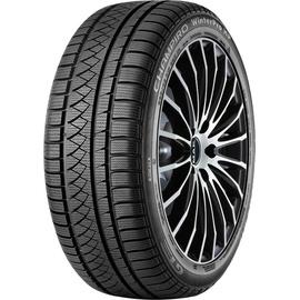 GT Radial Champiro Winterpro HP 205/50 R17 93V