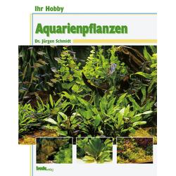 Ihr Hobby Aquarienpflanzen als Buch von Jürgen Schmidt