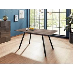 Esstisch Tristan, Tischplatte MDF 200 cm x 76 cm x 100 cm