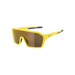 Alpina Sportbrille RAM HM+ gelb