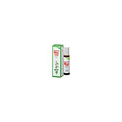 JAPANISCHES Minz-Heilöl Salus 10 ml