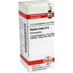 HEDERA HELIX D 6