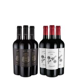 6er-Paket Rotwein Champions - Weinpakete