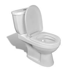 vidaXL Bidet vidaXL Toilette mit Spülkasten Weiß und Schwarz weiß