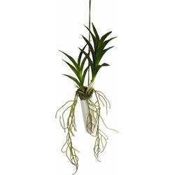Kunstpflanze Orchideenblätter Orchidee, I.GE.A., Höhe 44 cm