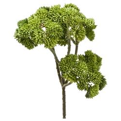 Kunstblume Fetthenne Kunstpflanze Dekopflanze 1 Stk 30 cm grün Fetthenne, matches21 HOME & HOBBY, Höhe 30 cm, Indoor grün