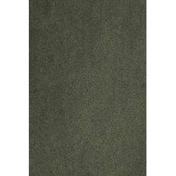 Teppich Proteus, aus Econyl® Garn, Meterware in 400 cm Breite grün 400 cm